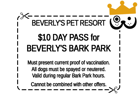 Click for printer-friendly Bark Park Free Day Pass coupon in a new window.