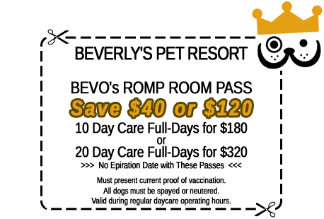 Click for printer-friendly Doggy Daycare discount coupon in a new window.