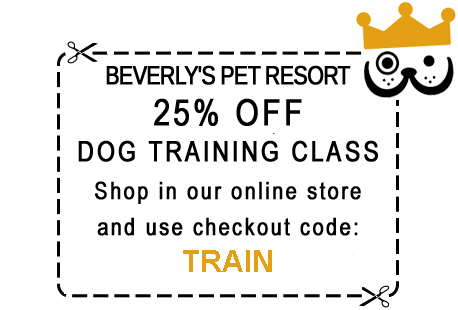 25% Discount Coupon - Shop Online for Dog Training Class