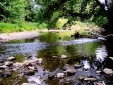Starkey Nature Park, Zionsville