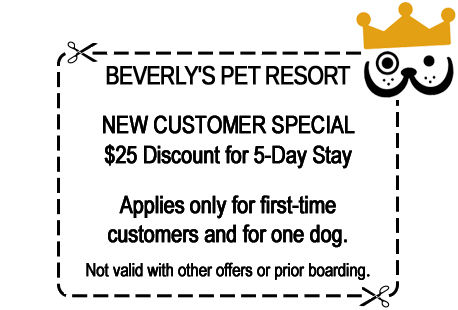 Click for printer-friendly new customer special discount boarding coupon. (opens in new window)