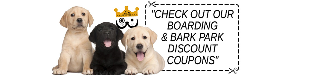 Saving Money on Dog Boarding is Good. CLICK NOW!