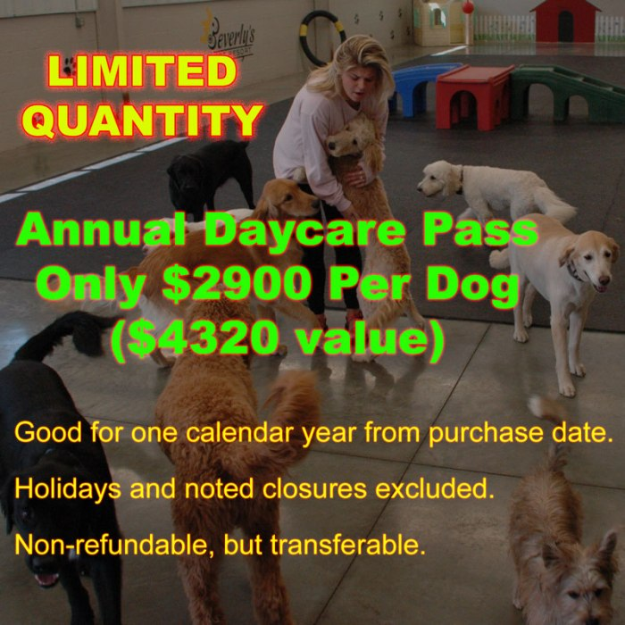 Annual Daycare Pass - Limited-Quantity - Only $2900 Per Dog