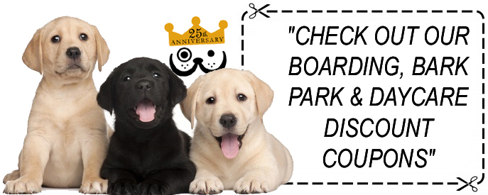 Check Out Our Boarding, Bark Park & Daycare Discount Coupons